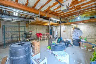 Photo 43: 639 TEMPLESIDE Road NE in Calgary: Temple Detached for sale : MLS®# A1136510