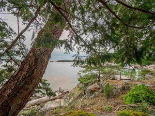 Photo 7: 9185 HYDAWAY Road in Sechelt: Halfmn Bay Secret Cv Redroofs House for sale (Sunshine Coast)  : MLS®# R2504559