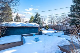 Photo 23: 2510 17 Street NW in Calgary: Capitol Hill Detached for sale : MLS®# A1074729