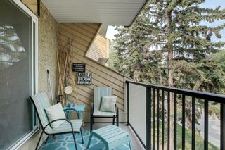Photo 17: 308 617 56 Avenue SW in Calgary: Windsor Park Apartment for sale : MLS®# A1134178