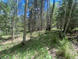 Photo 10: 5.78 Acres Parkins Road: Rural Foothills County Land for sale : MLS®# A1086953