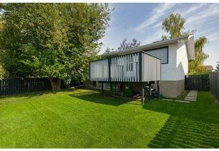 Photo 6: 1715 58 Street NE in Calgary: Pineridge Detached for sale : MLS®# A1140401