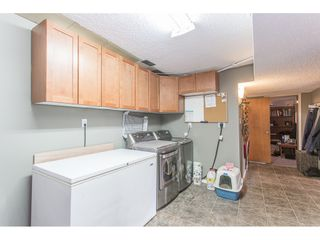 Photo 34: 12387 MOODY Street in Maple Ridge: West Central House for sale : MLS®# R2258400