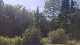 Photo 2: Lot 5 Moose River Road in Lindsay Lake: 35-Halifax County East Vacant Land for sale (Halifax-Dartmouth)  : MLS®# 201921613