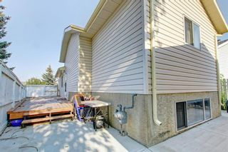 Photo 43: 25 Martinview Crescent NE in Calgary: Martindale Detached for sale : MLS®# A1107227