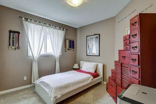 Photo 19: 72 CRANFIELD Circle SE in Calgary: Cranston Detached for sale : MLS®# C4236304