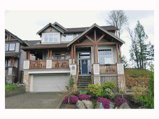 "Photo 1: 22922 VISTA RIDGE Drive in Maple Ridge: Silver Valley House for sale in ""SILVER RIDGE"" : MLS®# V819096"