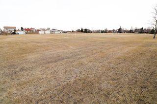 Photo 34: 19 Birchlynn Bay in Winnipeg: Garden Grove Residential for sale (4K)  : MLS®# 202106295