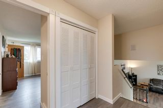 Photo 23: 1316 Idaho Street: Carstairs Detached for sale : MLS®# A1105317