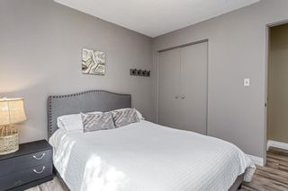 Photo 19: 243 Parkwood Close SE in Calgary: Parkland Detached for sale : MLS®# A1134335