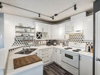 Photo 20: 103 1401 Centre A Street NE in Calgary: Crescent Heights Apartment for sale : MLS®# A1100205