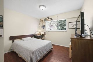 Photo 20: 21744 DONOVAN AVENUE in Maple Ridge: West Central Home for sale ()  : MLS®# R2416369
