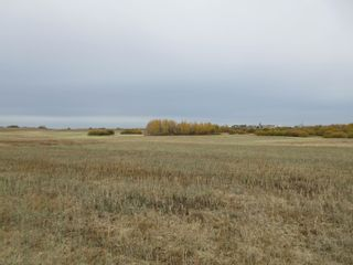 Photo 8: RR 270 North of Hwy 37: Rural Sturgeon County Rural Land/Vacant Lot for sale : MLS®# E4265129