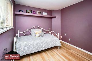 "Photo 35: 24113 102 Avenue in Maple Ridge: Albion House for sale in ""Homestead"" : MLS®# R2499816"