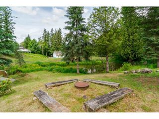 Photo 17: 3873 216 STREET in Langley: Brookswood Langley House for sale : MLS®# R2114161