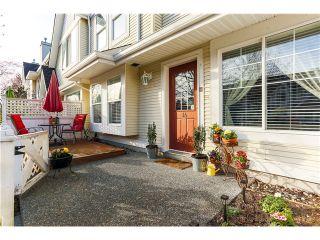 Photo 19: # 34 23575 119TH AV in Maple Ridge: Cottonwood MR Condo for sale : MLS®# V1108811