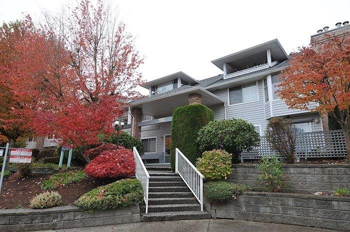 """Main Photo: 114 11578 225 Street in Maple Ridge: East Central Condo for sale in """"THE WILLOWS"""" : MLS®# R2118775"""