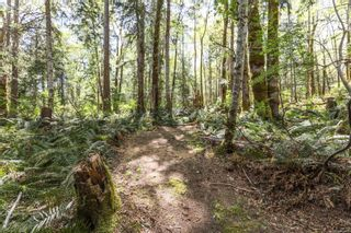 Photo 92: Lot 2 Eagles Dr in : CV Courtenay North Land for sale (Comox Valley)  : MLS®# 869395