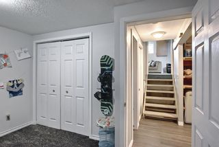 Photo 23: 80 Erin Grove Close SE in Calgary: Erin Woods Detached for sale : MLS®# A1107308