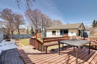 Photo 30: 1435 16 Street NE in Calgary: Mayland Heights Detached for sale : MLS®# A1099048
