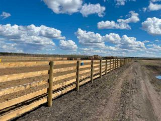 Photo 24: Twp 604 Rg Rd 244: Rural Westlock County Rural Land/Vacant Lot for sale : MLS®# E4223747
