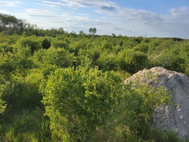 Main Photo:  in Ste. Anne: Vacant Land for sale : MLS®# 202118260