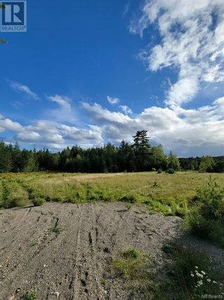 Photo 18: 2271 Route 127 in Waweig: House for sale : MLS®# NB063070