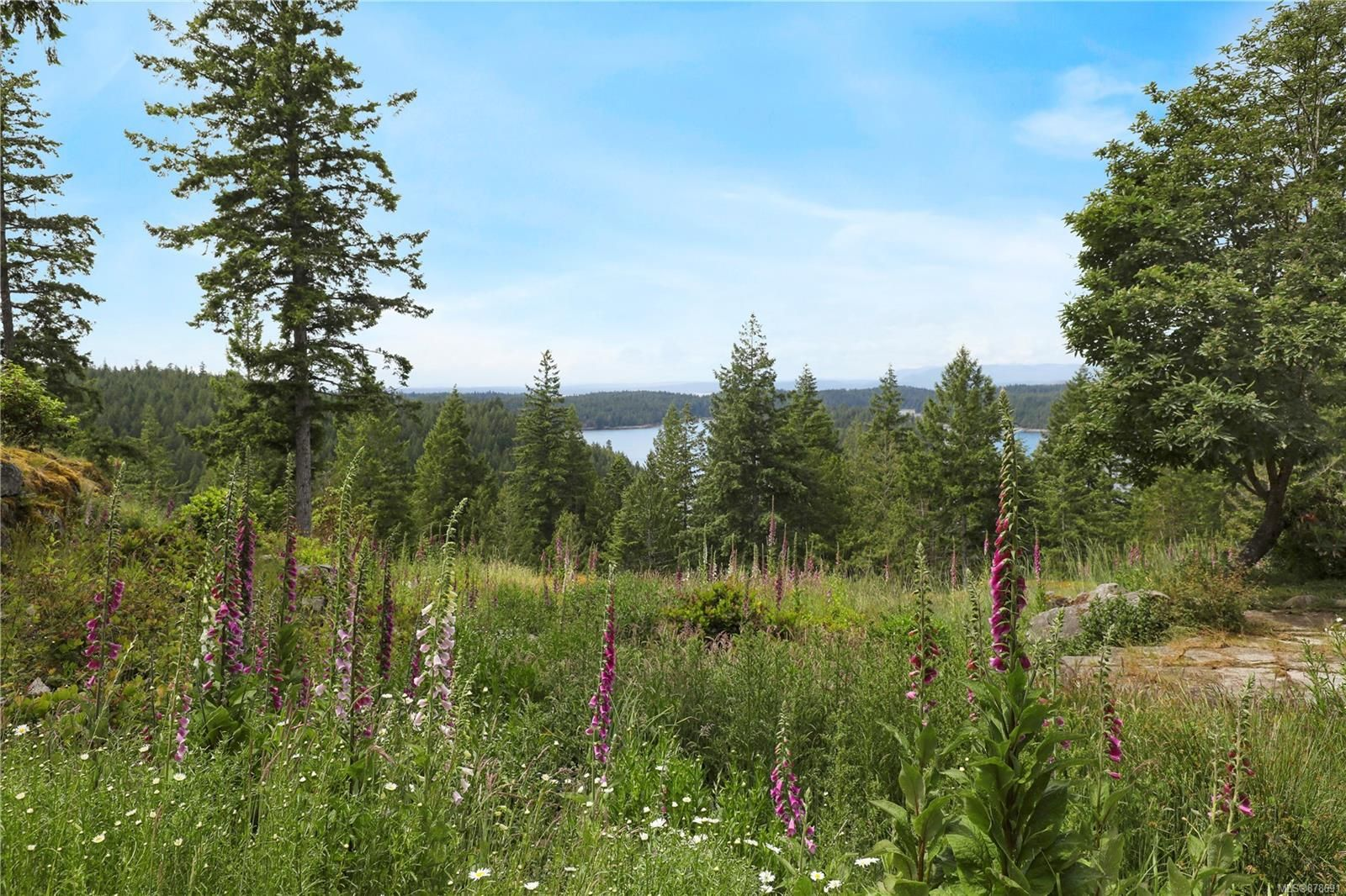 Photo 37: Photos: 979 Thunder Rd in : Isl Cortes Island House for sale (Islands)  : MLS®# 878691