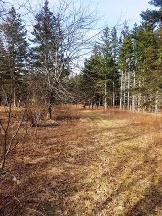 Photo 8: LOT 15 Fundy Bay Drive in Victoria Harbour: 404-Kings County Vacant Land for sale (Annapolis Valley)  : MLS®# 202105997