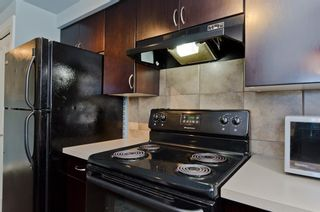 Photo 10: 6 609 67 Avenue SW in Calgary: Kingsland Apartment for sale : MLS®# A1077068