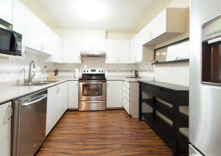 Photo 5: 110 6385 121 Street in Surrey: Panorama Ridge Condo for sale : MLS®# R2224904