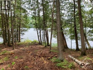 Photo 21: 2600 CLYDE LAKE ROAD in Lanark: Vacant Land for sale : MLS®# 1253879