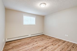 Photo 14: 103 11 Dover Point SE in Calgary: Dover Apartment for sale : MLS®# A1144552