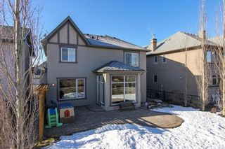 Photo 44: 290 DISCOVERY RIDGE Way SW in Calgary: Discovery Ridge House for sale : MLS®# C4119304