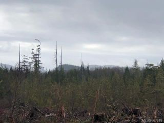 Photo 5: 1401 Alaska Pine Rd in : PA Ucluelet Land for sale (Port Alberni)  : MLS®# 867248