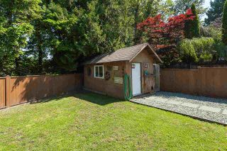 Photo 17: 5073 205 Street in Langley: Langley City House for sale : MLS®# R2371444