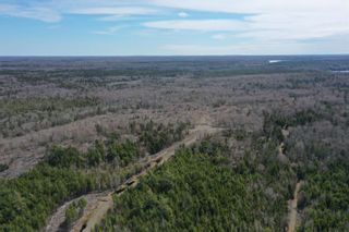 Photo 9: Lots Hectanooga Road in Mayflower: 401-Digby County Vacant Land for sale (Annapolis Valley)  : MLS®# 202110451