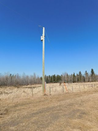 Photo 5: Hwy 28 North of Twp 570: Rural Sturgeon County Rural Land/Vacant Lot for sale : MLS®# E4238709
