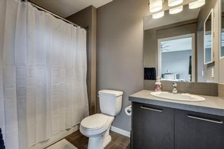 Photo 24: 42 COPPERPOND Place SE in Calgary: Copperfield Semi Detached for sale : MLS®# C4270792