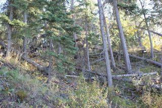 Photo 27: ON Township Road 355A: Rural Red Deer County Land for sale : MLS®# A1039276
