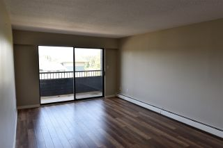 Photo 4: 215 2551 WILLOW Lane in Abbotsford: Central Abbotsford Condo for sale : MLS®# R2188164