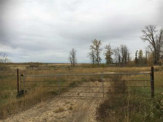 Photo 11: HWY 39 RR 34: Rural Leduc County Rural Land/Vacant Lot for sale : MLS®# E4235214