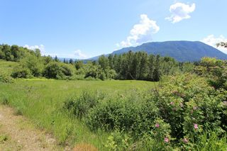 Photo 6: 37 2481 Squilax Anglemont Road in Lee Creek: North Shuswap Land Only for sale (Shuswap)  : MLS®# 10094382