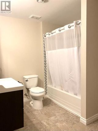 Photo 26: 255 Meadowbrook Drive E in Brooks: House for sale : MLS®# A1113573