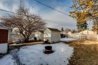 Photo 11: 1527 42 Street SE in Calgary: Forest Lawn Detached for sale : MLS®# A1079125