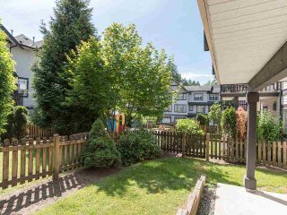 """Photo 3: 76 19932 70 Avenue in Langley: Willoughby Heights Townhouse for sale in """"Summerwood"""" : MLS®# R2380626"""