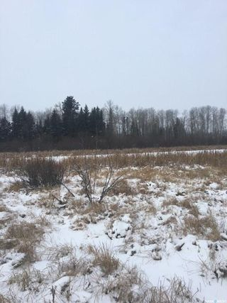 Photo 11: 65 acres land in Preeceville: Lot/Land for sale : MLS®# SK848653