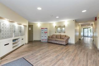 """Photo 33: 411 1190 PACIFIC Street in Coquitlam: North Coquitlam Condo for sale in """"Pacific Glen"""" : MLS®# R2588073"""
