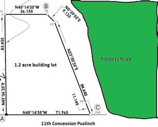 Photo 2: Ptlt 34 Concession 11 Road in Puslinch: Rural Puslinch Property for sale : MLS®# X4676735