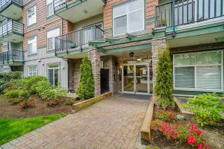 "Photo 29: 222 8183 121A Street in Surrey: Queen Mary Park Surrey Condo for sale in ""CELESTE"" : MLS®# R2573845"